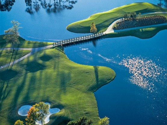 Big Cats Golf Package Myrtle Beach